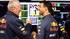 F1 Red Bull, Marko: «Decisione strana quella di Ricciardo»