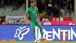 Serie A Fiorentina, problema muscolare per Lafont