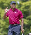 Ryder Cup: anche Tiger Woods in team Usa