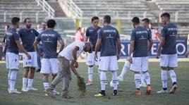 Serie B, il giudice sportivo: Cosenza-Verona 0-3 a tavolino