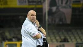 Serie B Palermo, Tedino: «Perugia squadra ben costruita»