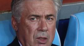 Ancelotti, colpo di mercato: preso un cavallo per 75mila euro