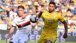 Serie A Frosinone, Capuano torna in gruppo. Personalizzato per Perica