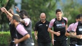 Serie B Palermo, con Stellone torna l'entusiasmo