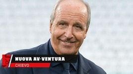 Chievo, Ventura sostituirà D'Anna