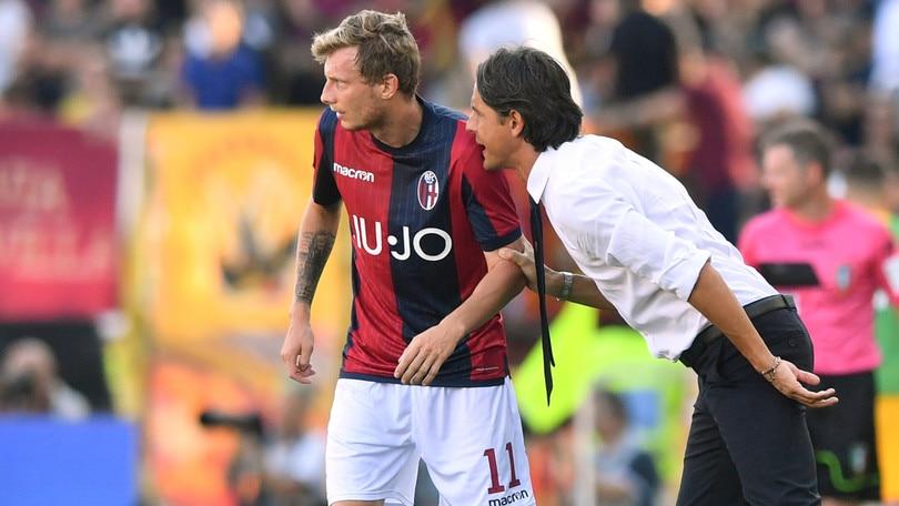 Serie A Bologna, problema muscolare per Krejci. A parte Skorupski e Falcinelli