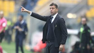 Serie A Parma, D'Aversa: «Con il giusto piglio possiamo fare risultato»