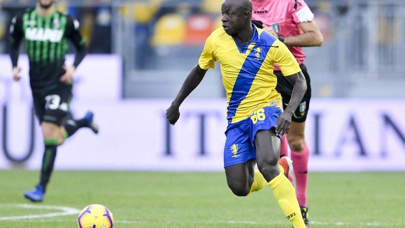 Calciomercato Parma, nel mirino Chibsah del Frosinone