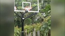 James Rodriguez, l'obiettivo della Juve gioca a Basket