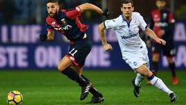 Frosinone, la spesa al Benfica: Taarabt