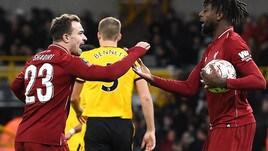«Tottenham su Origi dopo l'infortunio di Kane»