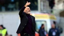 Serie A Fiorentina, Pioli: «Grande merito al cuore dei ragazzi, ci hanno creduto fino alla fine»