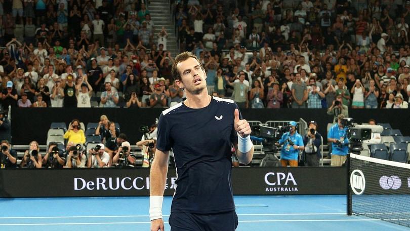Tennis, Murray non molla: operato all'anca, i tempi di recupero
