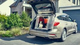 Ford Focus wagon, sicurezza totale anche per i cani