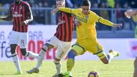 Serie A Frosinone, solo terapie per Ghiglione