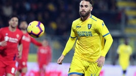 Serie A Frosinone, terapie per Zampano e Ghiglione