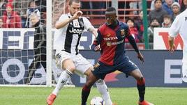 Serie A Genoa, Kouame: «Con l'Udinese sarà dura»