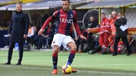 Serie A Bologna, parte di lavoro in gruppo per Edera