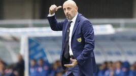 Serie A Chievo, Di Carlo: «Siamo tutti molto arrabbiati»
