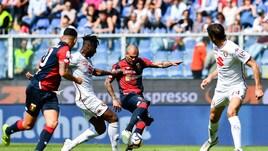 Serie A Genoa, solo terapie per Sturaro e Favilli