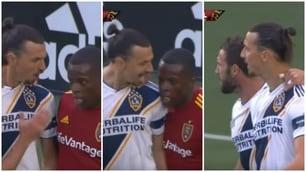 Ibrahimovic è una furia, scintille in campo in Mls