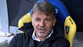 Serie A Frosinone, Baroni: «Abbiamo il desiderio di rimanere vivi, possiamo fare bene»