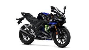 Yamaha, le foto della YZF-R125 Monster Energy