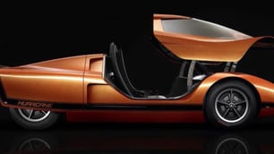 Portiere strane e dove trovarle: le auto più insolite di sempre FOTO