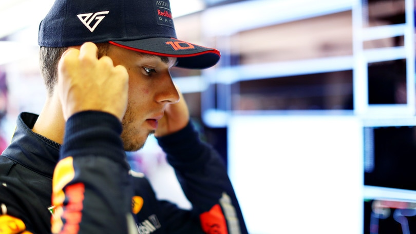 Red Bull, Gasly: