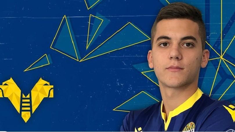 Verona, Jocic è ufficialmente gialloblù