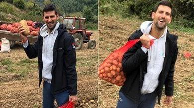 Novak Djokovic, che bottino: porta a casa un sacco di...patate!