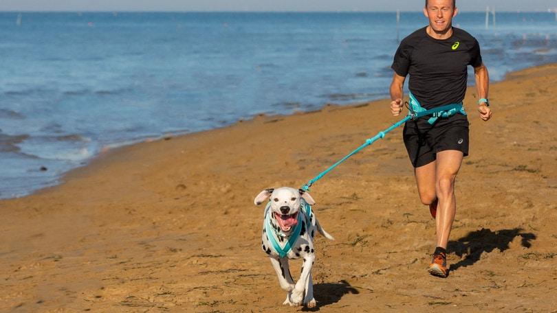 """C'è Stefano Baldini per la """"Dog and Run"""" a Bibione:"""