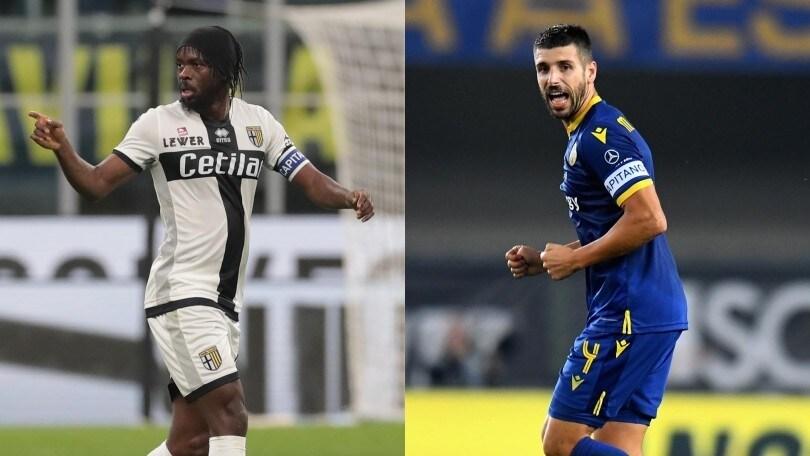 Diretta Parma-Hellas Verona ore 19: formazioni ufficiali e dove vederla in tv