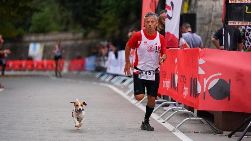 Correre con il cane? Certo che puoi. Fai così
