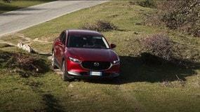 Video Mazda CX-30 AWD: in off-road a caccia di panorami