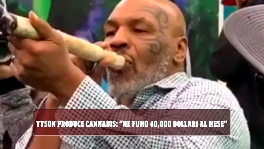 "Tyson produce cannabis: ""Ne fumo 40 mila dollari al mese"""
