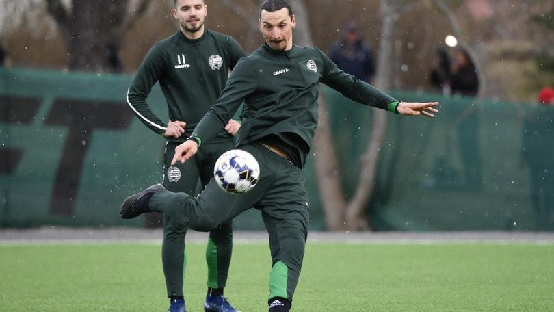 Milan, acquistato il giovane Roback dal club di Ibrahimovic