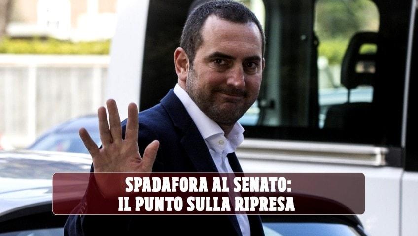 Spadafora al Senato: il punto sulla ripresa delle discipline sportive in Italia