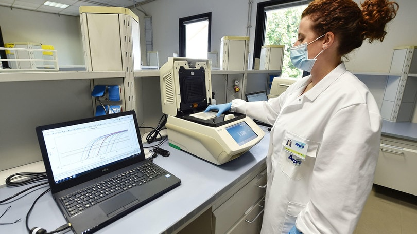 Coronavirus in Italia, 1.008 positivi e 14 morti in 24 ore
