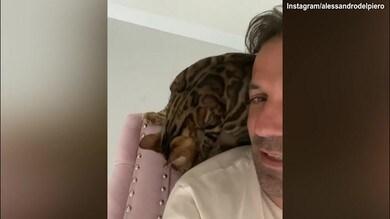 Del Piero chiede un bacio...al gatto!