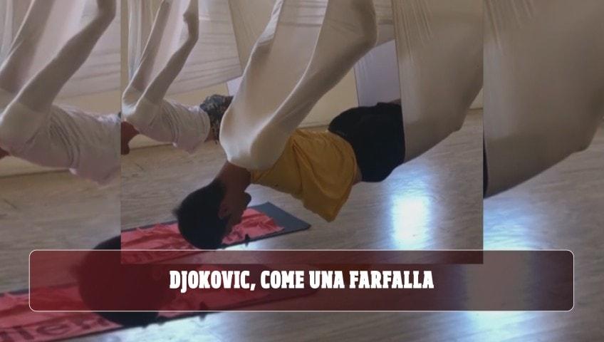 Djokovic, come una farfalla